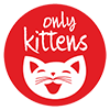 Only Kittens The Best Kitten Cattery