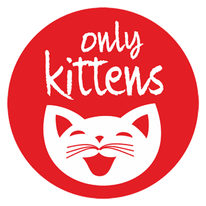 Kittens For Sale All Over India